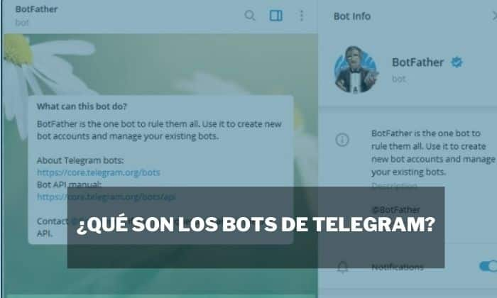 usar bot telegram